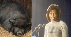 Michelle Obama se os porcos votassem